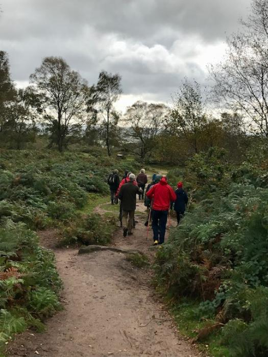 Bickerton Hill 5