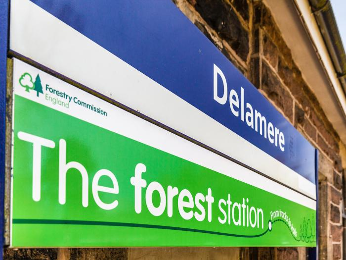 Delamere Forest Station Sign