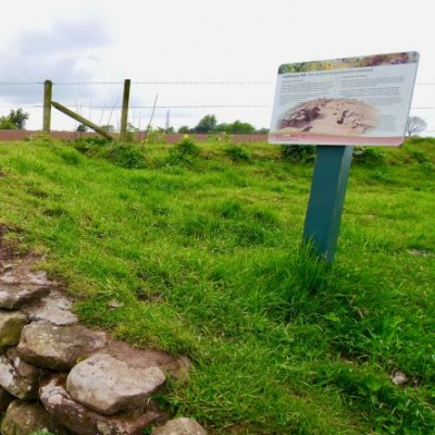 Eddisbury Hillfort interpretation panel