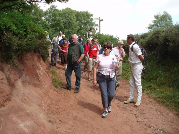 Guided walk at Bickerton Hill