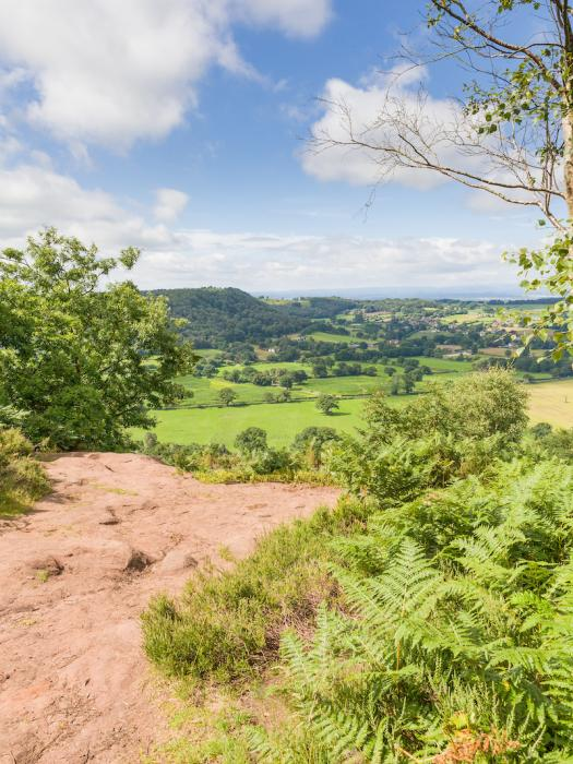Sandstone Trail view from Bickerton Hill 2