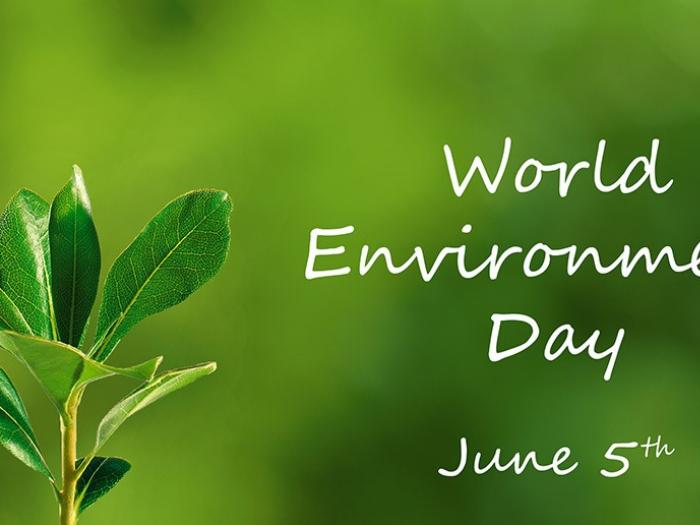 World-Environment-Day copy